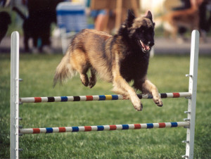 Copy (2) of BJ jumping '98