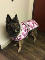 Paige ready for rain